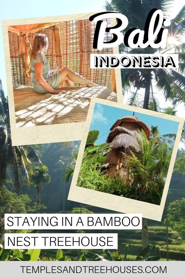 Unusual places to stay in Ubud, Bali: a bamboo nest